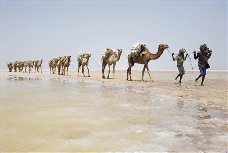 2013-05-17T112146Z_1_CBRE94G0VKH00_RTROPTP_2_ETHIOPIA-SALT